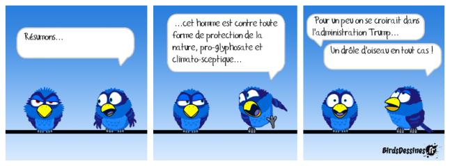 Planche4bis